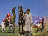 Horse and Cattle Show - Lahore
