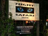 Night Safari - Singapore