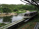 Singapore Jurong Bird Park Tour - Singapore